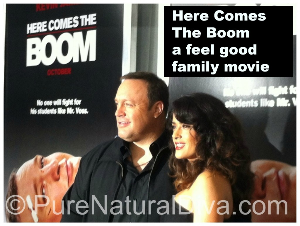 Here Comes the Boom Movie Review